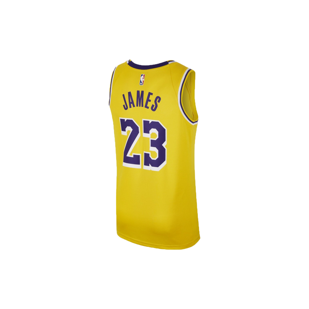 lebron james icon edition swingman