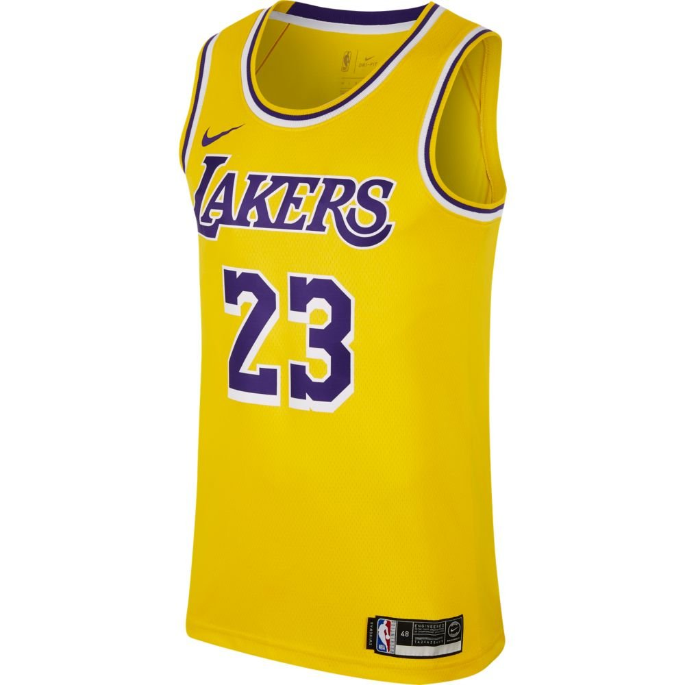 nike nba lebron james swingman road jersey (aa7099-741)