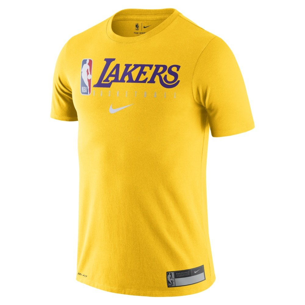 nike nba los angeles lakers short sleeve t-shirt (at0688-741)