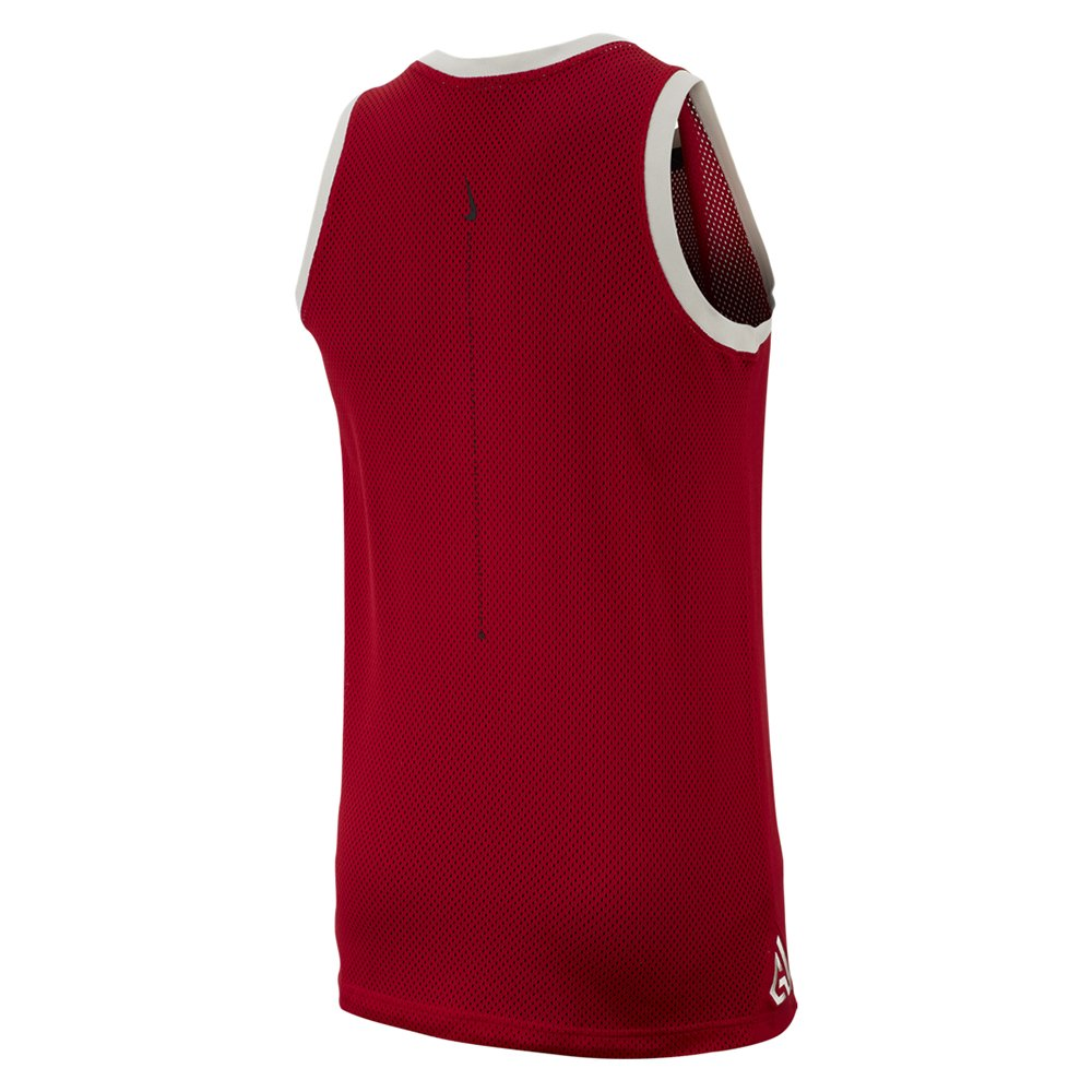 nike giannis logo tank (cd9556-687)