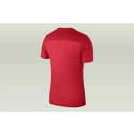 koszulka nike park 18 junior (aa2057-657)