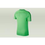 koszulka nike academy 18 junior (893750-361)
