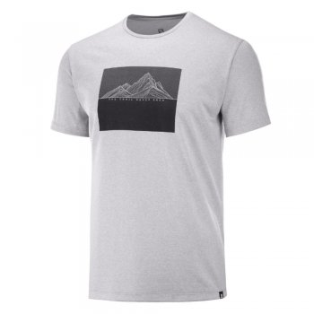 salomon agile graphic tee m szara